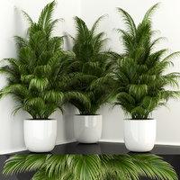 3D plants 107