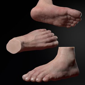 foot sculpt zbrush 3D model