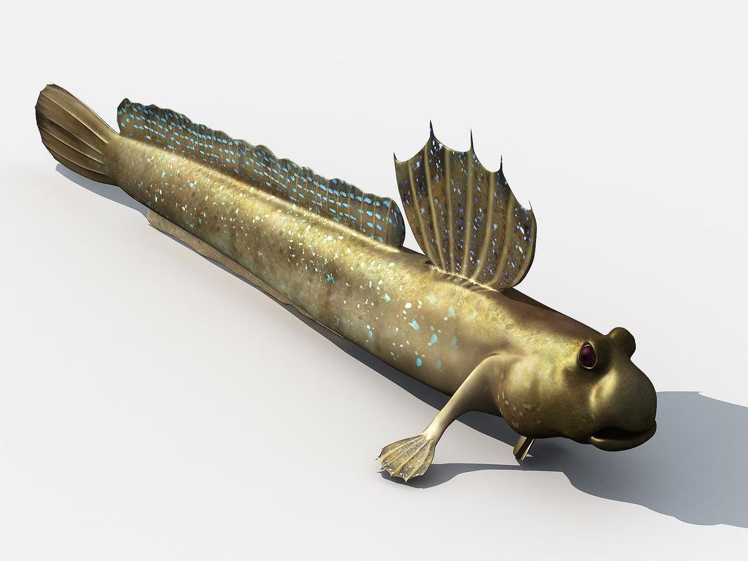 3D jump fish boleophthalmus