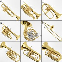 3D model brass musical instrument