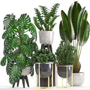 3D ornamental plants pots model