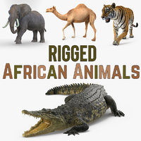 3D rigged african animals model