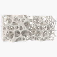 3D square bone structure model