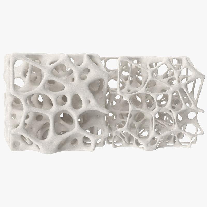 3D square bone structure model