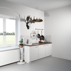 kitchen coroner model
