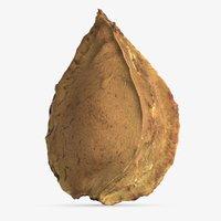 3D apricot kernel