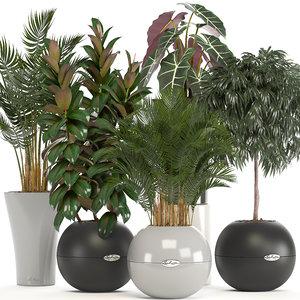 plants pots 3D