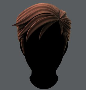 3D hair man model