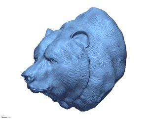 3D bear head grizzly