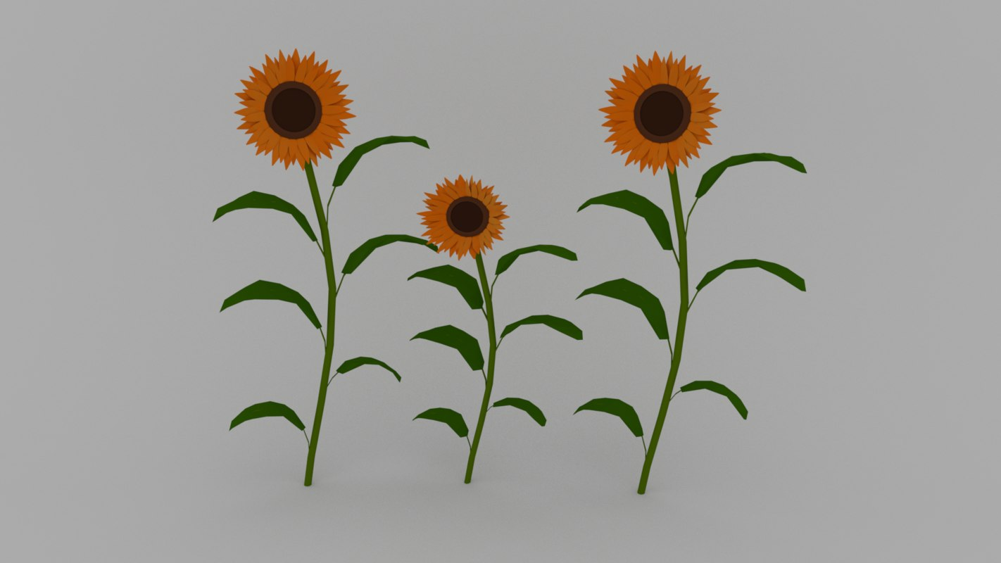 3D flower plant sunflower model