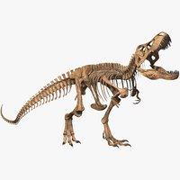 3D rex skeleton t