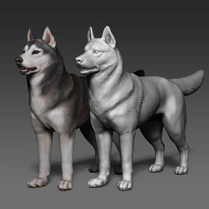 siberian husky polypaint polygons model