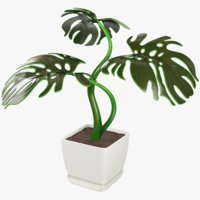 3D monstera pot