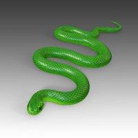 3D green mamba rig