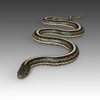 Garter Snake Rigged