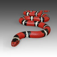 Scarlet King Snake Rigged