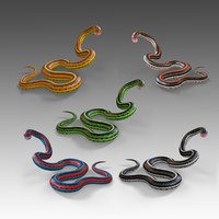 3D snake reptiles