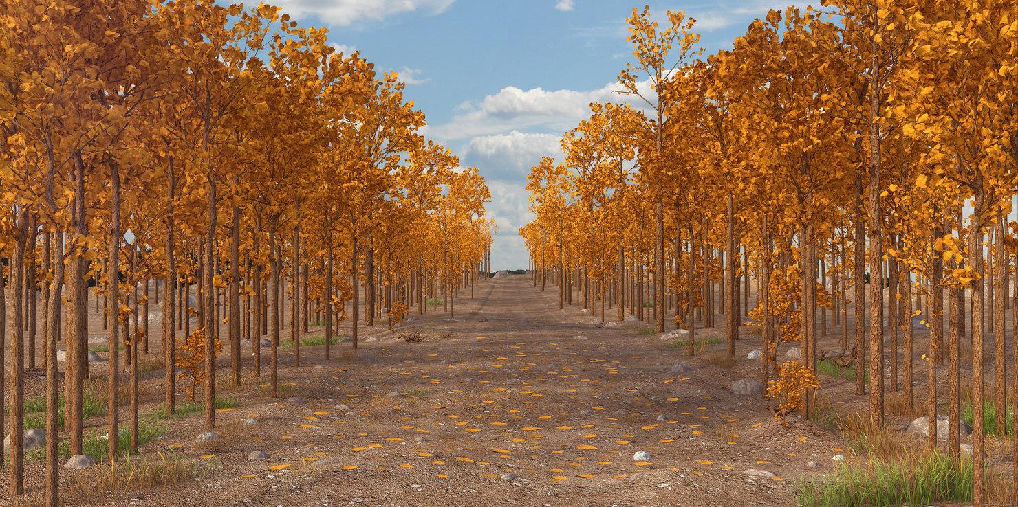 landscape autumn 3D model