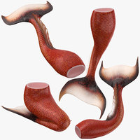 3D mermaid tails 01