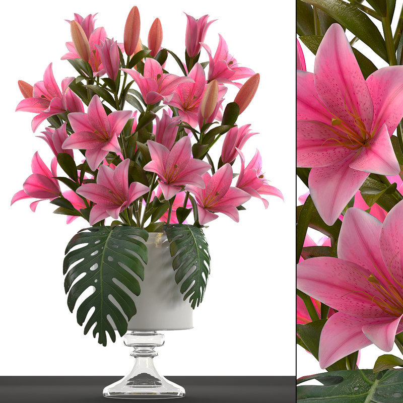 3D bouquet pink lilies model