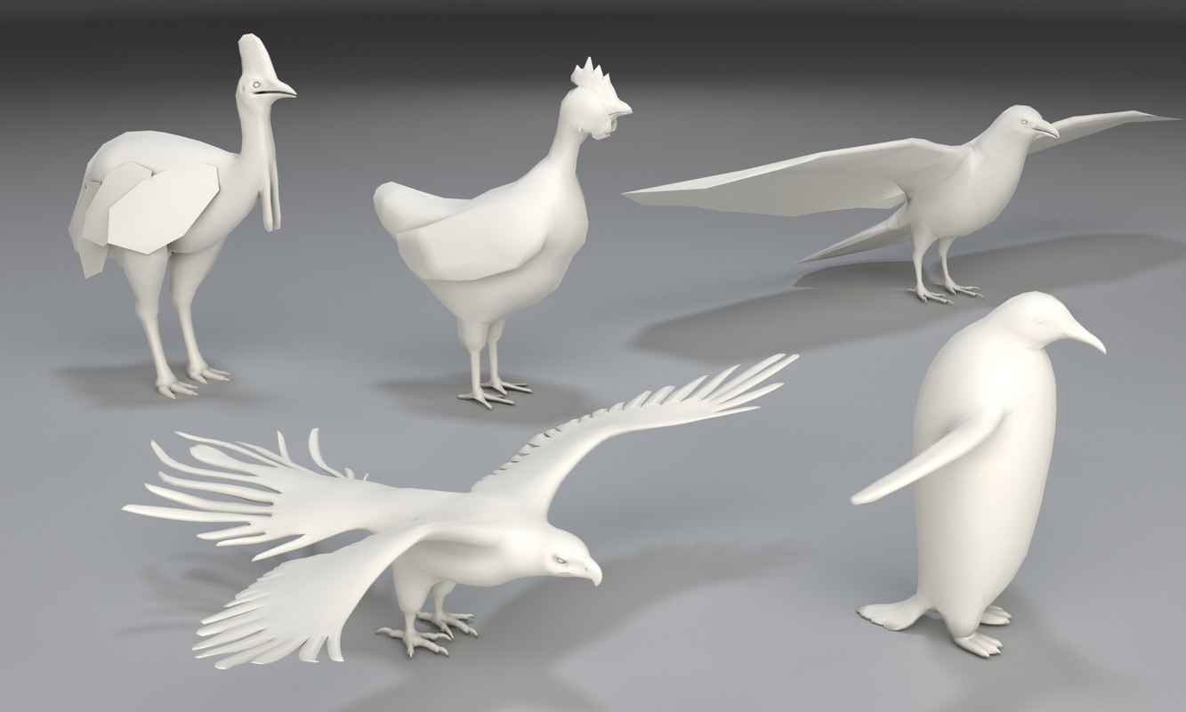 5 birds - 3D model