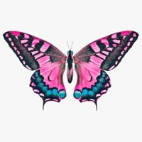 butterfly pink 3D