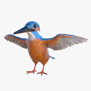 common kingfisher 3D model