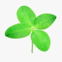 3D clover plant pbr model