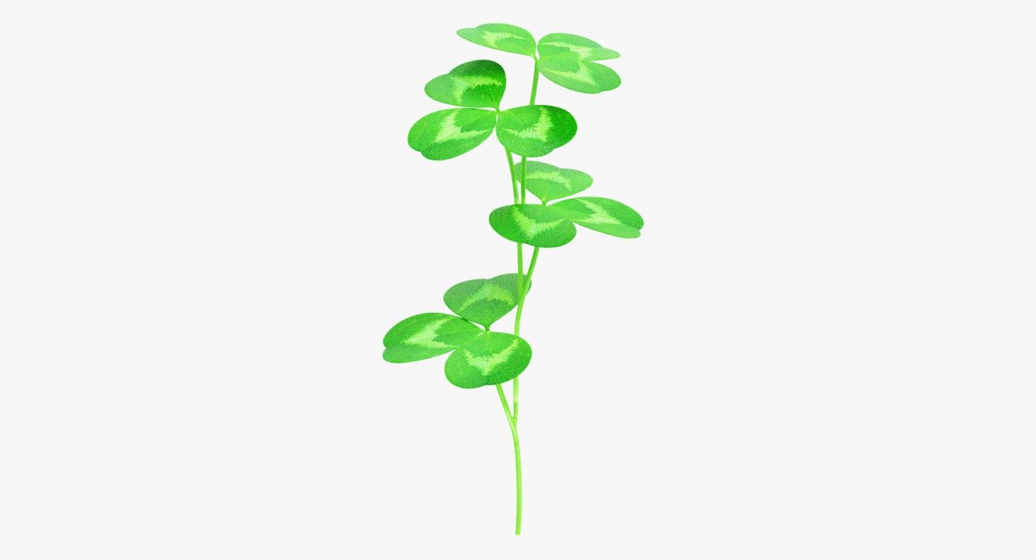 3D model clover plant pbr
