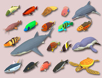 fish cartoon games 3D