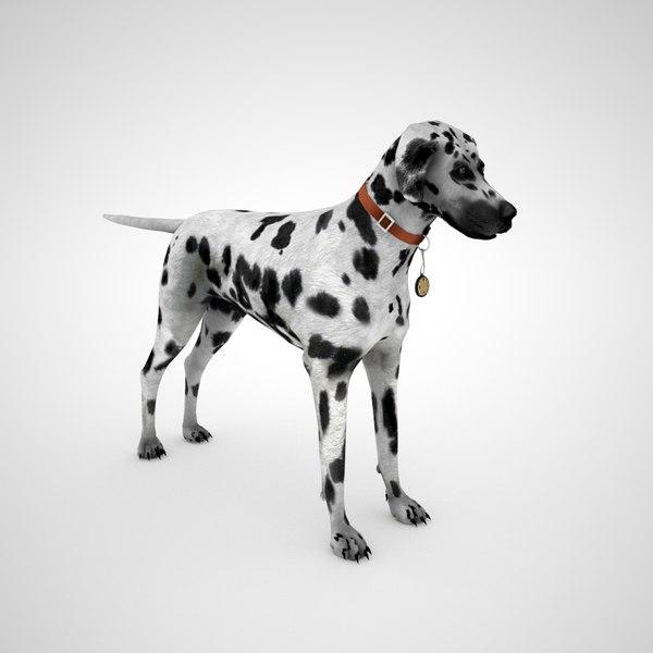 3D dalmatian dog collar - model