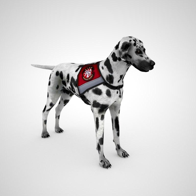 dalmatian dog vest - 3D model