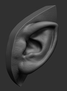 ear ztl stl 3D model