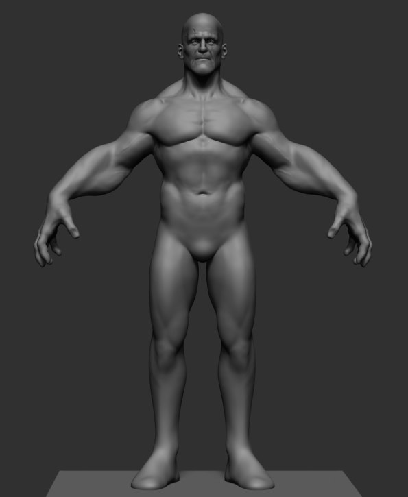 character reference ztl 3D model