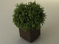 planter box 3D model