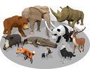 3D cartoon animals -
