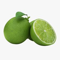 realistic small lime 02 3D model