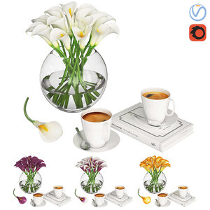 callas vase coffee 3D model