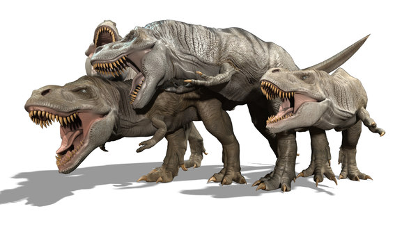 3D fighting tyrannosaurs