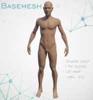 3D basemesh sculpt uv model