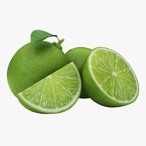 realistic small lime 03 3D model