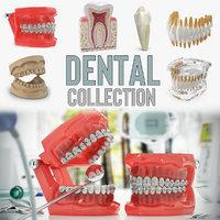 3D model dental 2