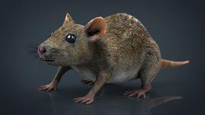 3D realistic rat model