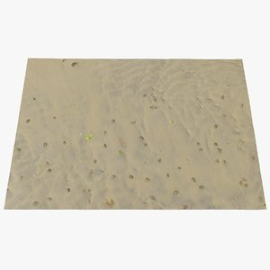 sand scan 3D model