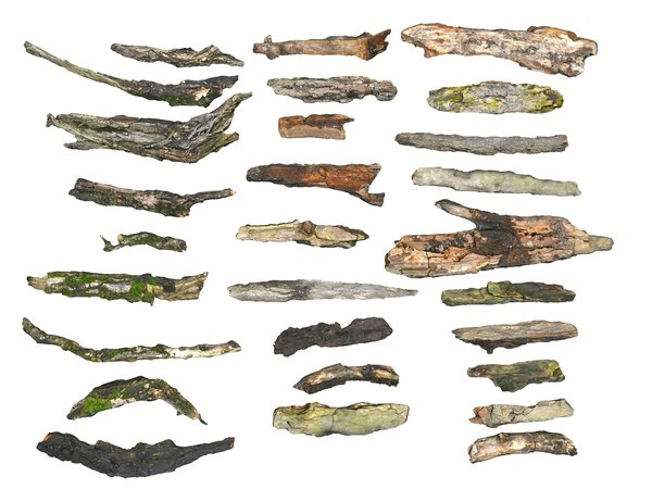 3D bark branches 28 packed