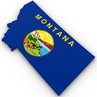 political montana 3D model