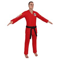 jiu jitsu martial artist 3D