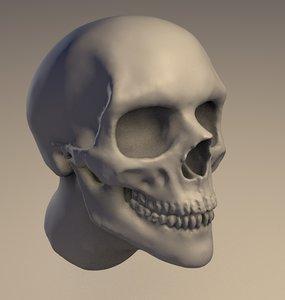 3D skull head sculpt