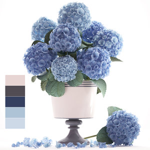 bouquet blue hydrangea model
