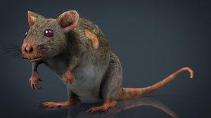 3D radiactive rat
